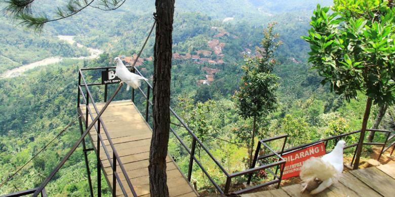 Desa Wisata Digalakkan Kabar Berita Terbaru Informay Pengembangan Tersebut Perlahan