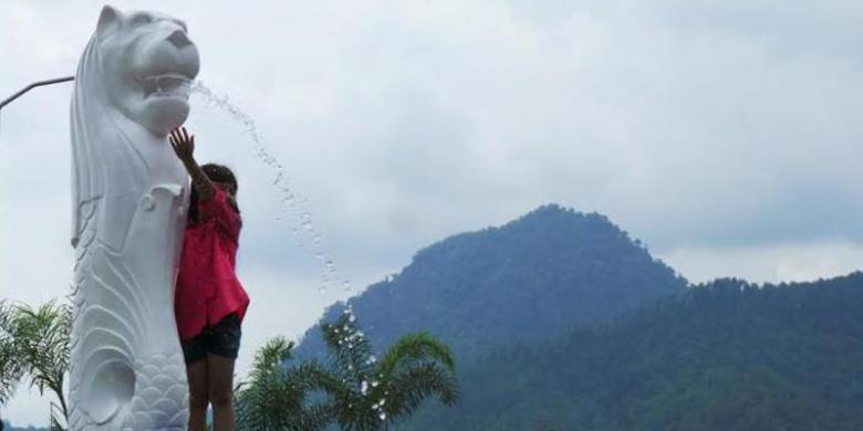 Hit Baturraden Foto Antara Bunga Tulip Keliling Dunia Desa Wisata