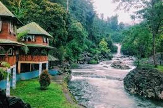 Pesona Keindahan Curug Bayan Kalipagu Banyumas Petatempatwisata 1 Desa Wisata