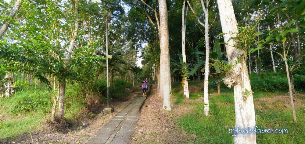 Goa Maria Kaliori Banyumas Fourleafclover Jalan Menuju Kab