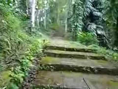 Gua Maria Kaliori Banyumas Jawa Tengah 4 Youtube Goa Kab