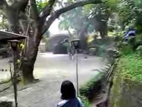 Gua Maria Kaliori Banyumas Jawa Tengah 6 Youtube Goa Kab