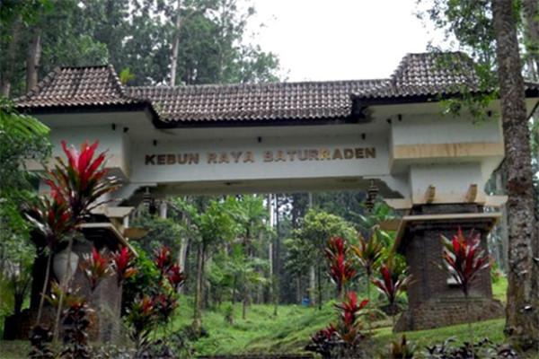 7 Objek Wisata Menarik Kawasan Baturaden Banyumas Kebun Raya Baturraden