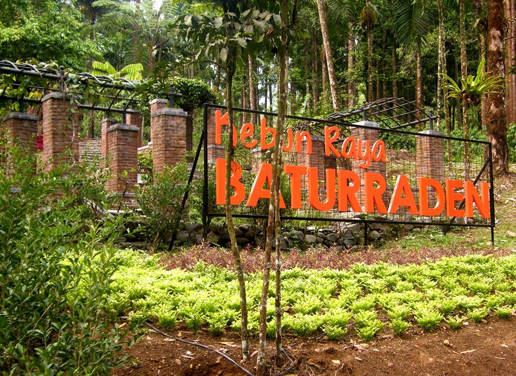 Jalan Kebun Raya Batur Raden Kabupaten Banyumas Bocah Baturraden Kab