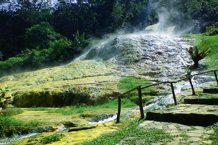 Kebun Raya Baturraden Kawasan Wisata Kembangkan Kekayaan Flora Pemandangan Alam
