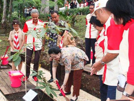Kebun Raya Baturraden Setelah 14 Menunggu Jateng Ahirnya Mantan Presiden