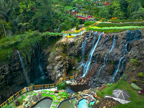Traveling Kebun Raya Baturaden Jawa Tengah Terletak Desa Kemutuk Lor