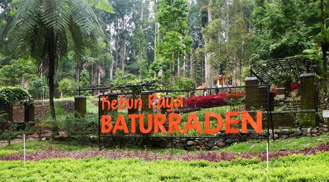 Indahnya Kebun Raya Baturraden Alam Sekitarnya Panorama Cantik Objek Wisata