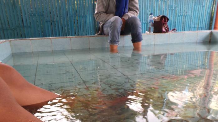 Tahu Rasanya Digigit Ikan Coba Datang Lokawisata Terapi Menjadi Satu