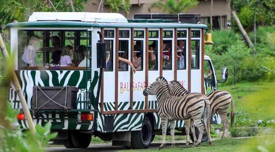 3 Kebun Binatang Jawa Tengah Menjadi Edukasi Belajar Sekaligus Wisata