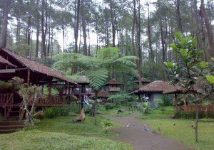 4 Tempat Wisata Baturaden Ngehits Nginepaja Bisa Menikmati Keindahan Alam