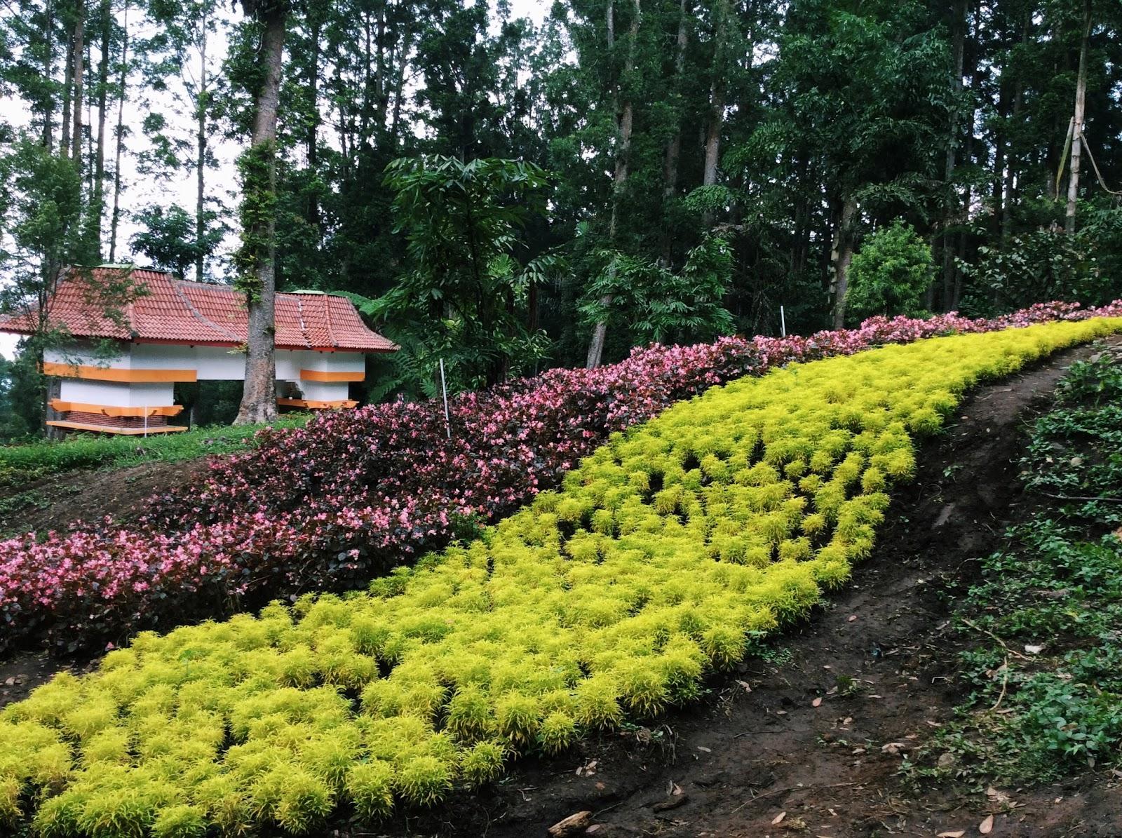 Keistimewaan Baturaden Wisata Kebun Raya Banyumas Satria Mandala Baturraden Kab