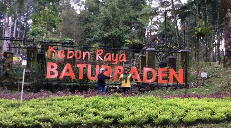 Wisata Alam Kesejukan Lereng Gunung Selamet Kebun Raya Baturaden Purwokerto