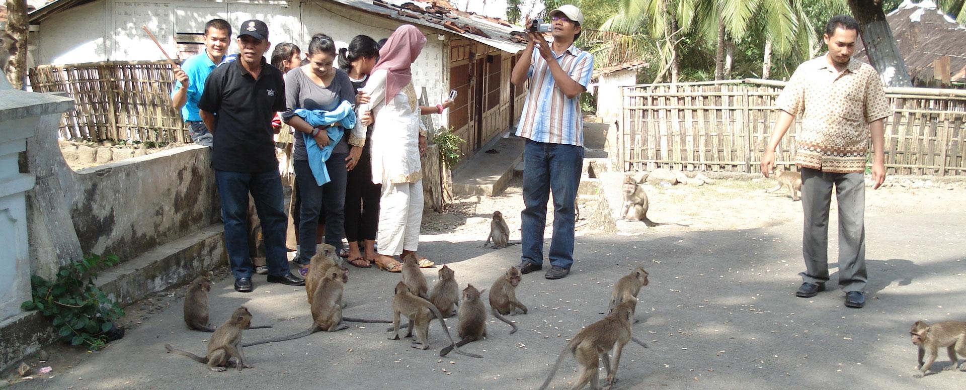 Destinasi Wisata Banyumas Masjid Saka Tunggal Taman Kera Kab
