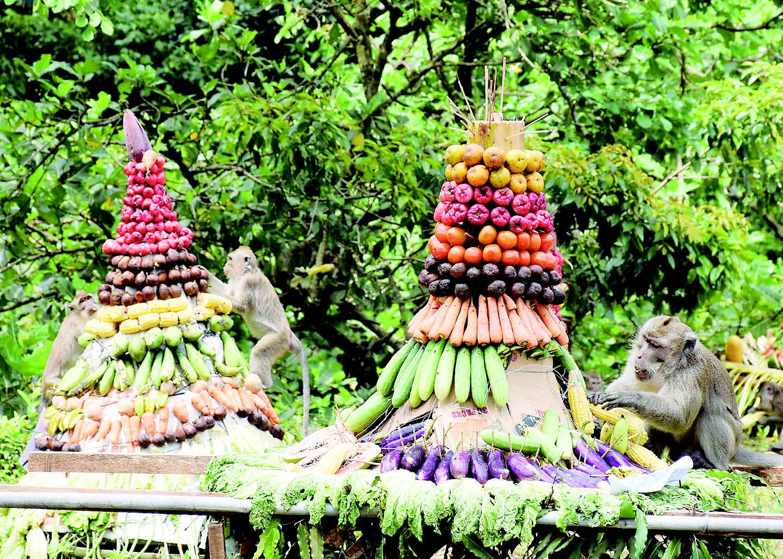 Festival Rewandha Bojana Minggu 23 April Cikakak Pemerintah Kabupaten Banyumas