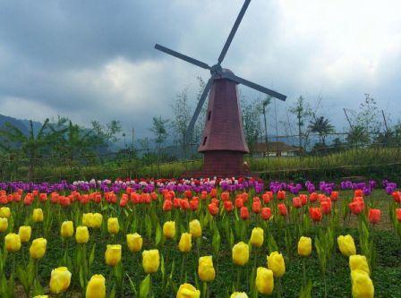 30 Tempat Wisata Purwokerto Wajib Dikunjungi Liburan Miniatur Dunia Small