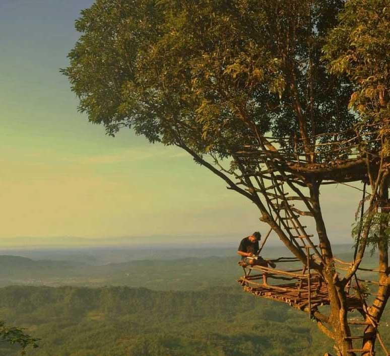 Destinasi Tempat Wisata Purbalingga Terbaru Terpopuler 2018 Gambar Rumah Pohon