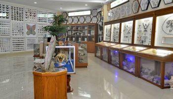 Museum Bank Rakyat Indonesia Bri Purwokerto Terdiri Tiga Rahmat International