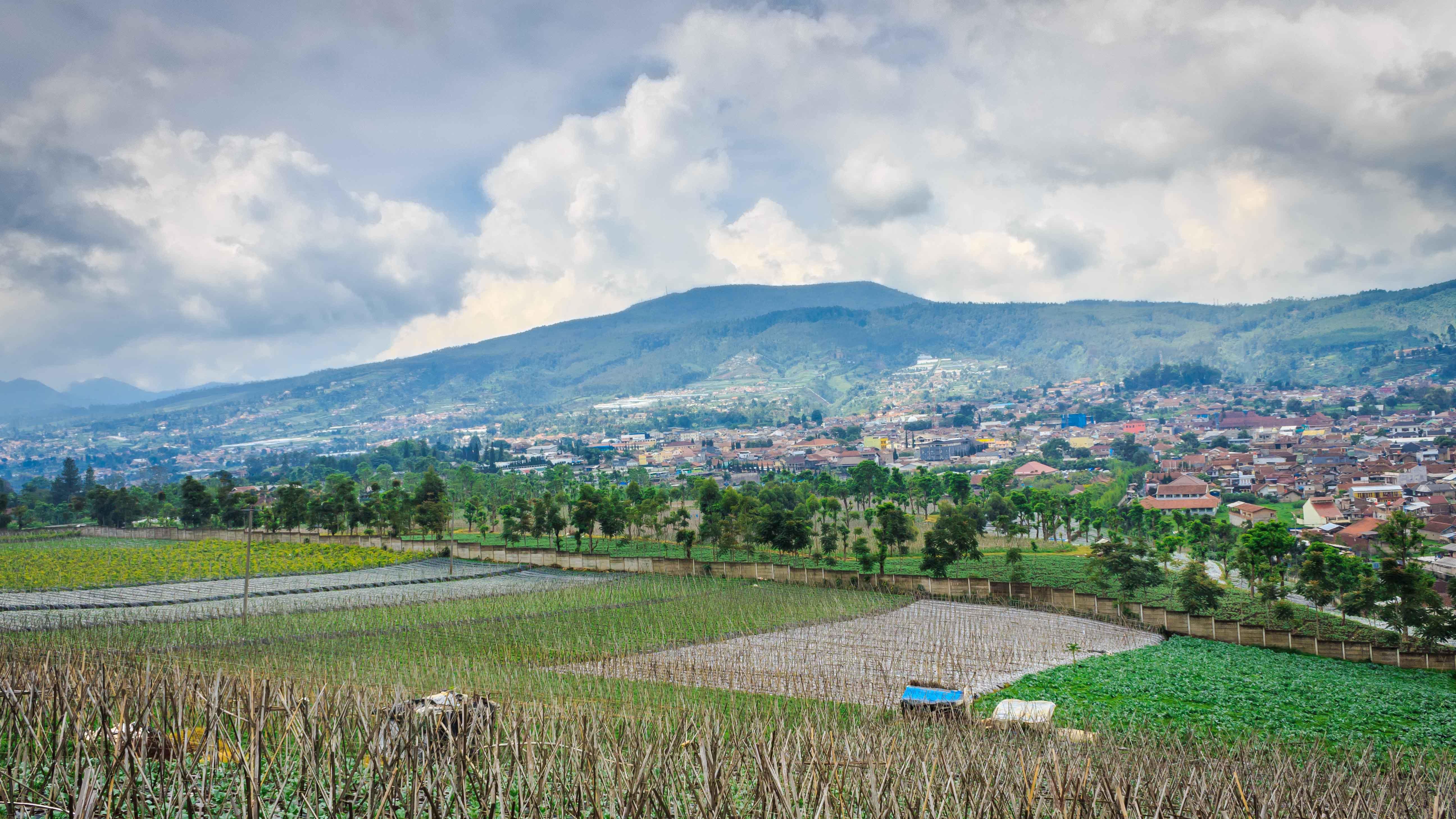 15 Destinasi Wisata Keluarga Purwokerto Asyik Menyenangkan Tempat Lembang Romantis