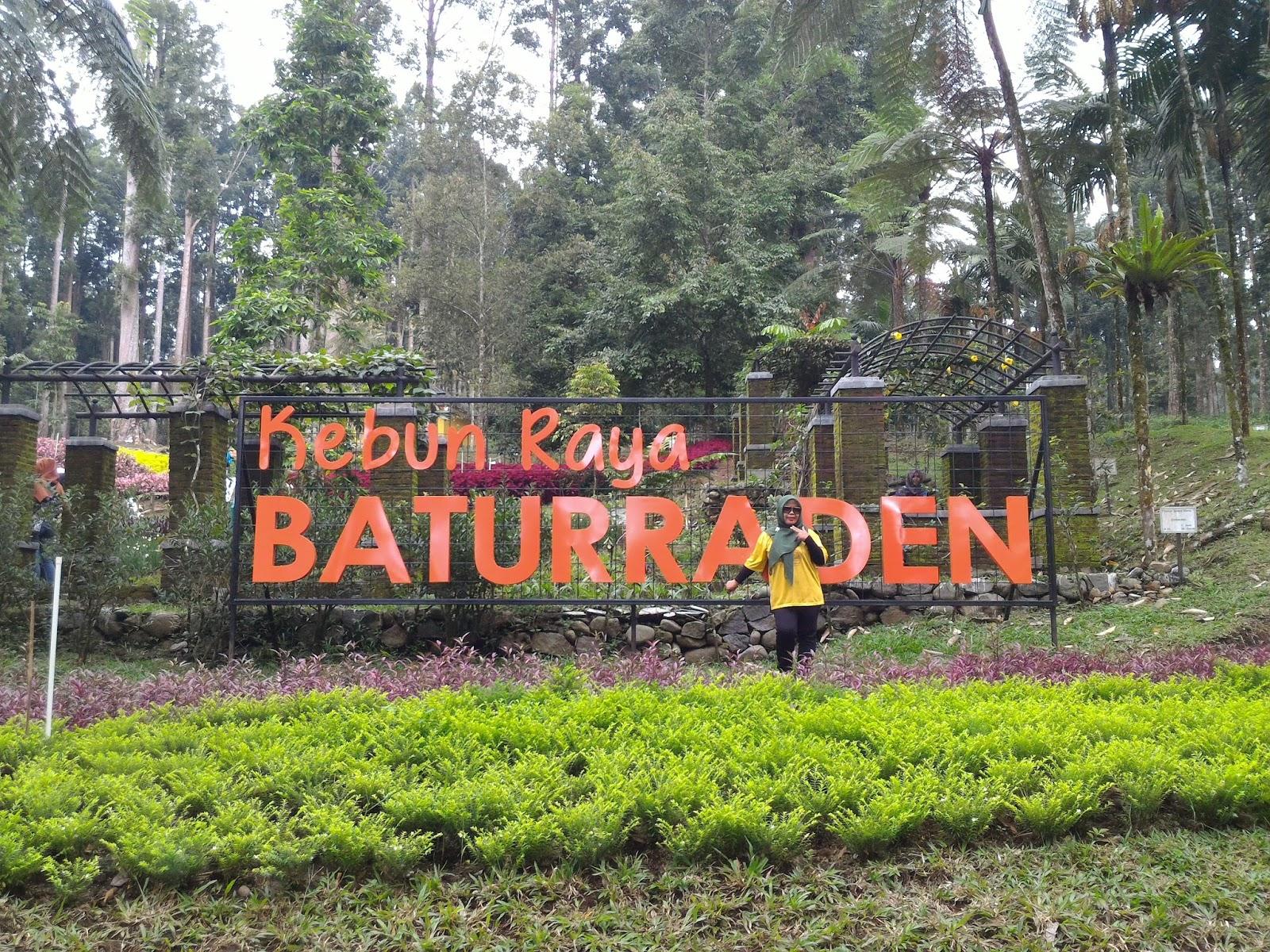 30 Wisata Banyumas Jawa Tengah Populer Tempat Terindah 12 Kebun