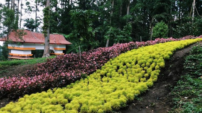 Kebun Raya Baturaden Banyumas Satria Wisata Taman Kab