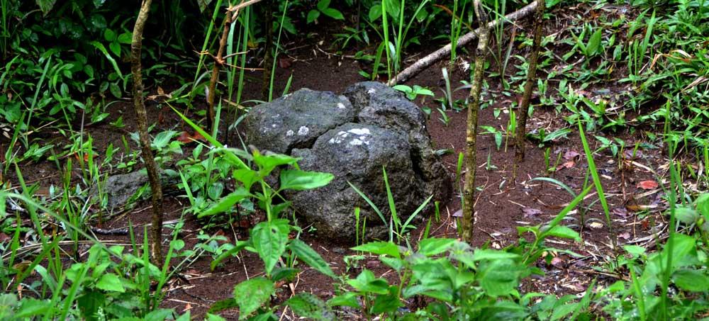Suasana Hutan Situs Purbakala Wisata Batur Agung Trend Berdasarkan Cerita