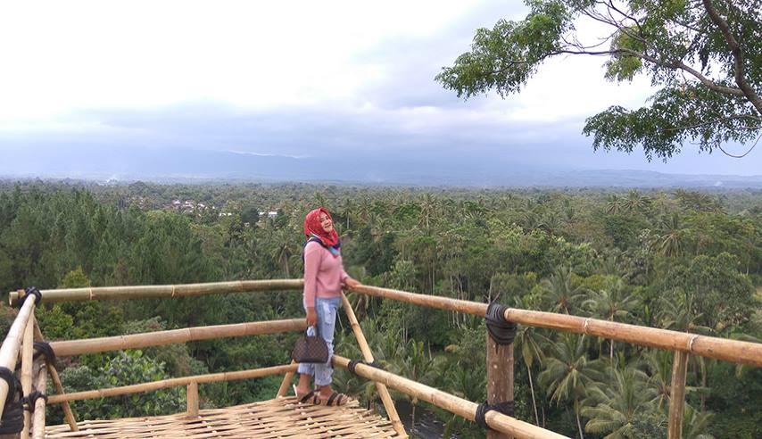 Bukit Mondoleko Wisata Banyuwangi Cocok Buat Hobi Foto Jembatan Selfie