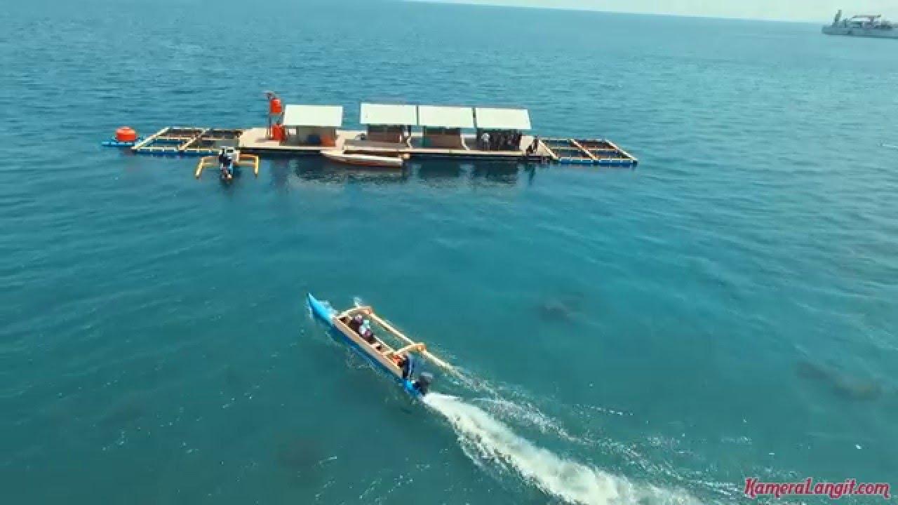 Aerial Video Pantai Bangsring Banyuwangi Jawa Timur Full Hd 1080p