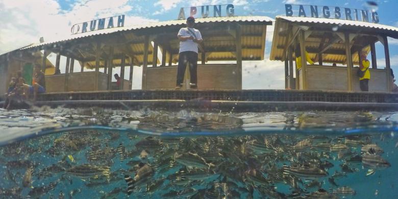 Bangsring Water Ijen Resort Wakili Indonesia Unwto Pantai Dikelola Kelompo