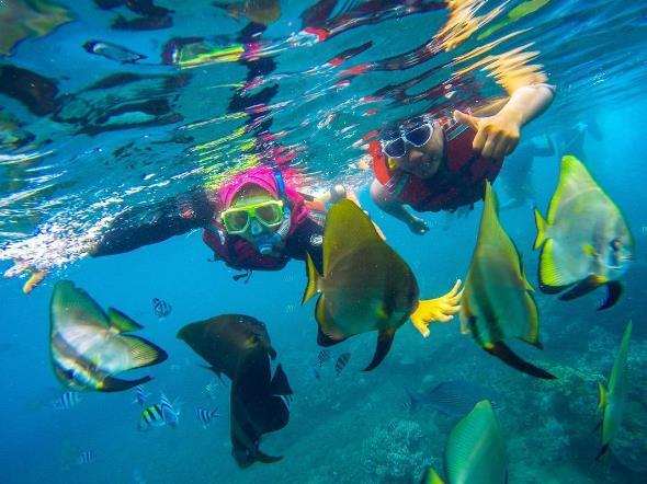 Destinasi Jalan Menuju Pantai Bangsring Underwater Banyuwangi Snorkeling Kab