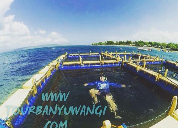 Keeksotisan Pantai Bangsring Banyuwangi Paket Wisata Akses Menuju Alamat Kab