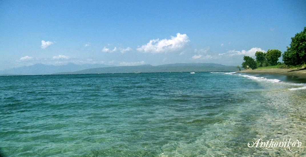Pantai Bangsring Pulau Tabuhan Melayang Atas Hutan Terumbu Karang Kab