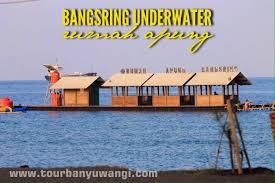 Pantai Bangsring Terletak Kabupaten Banyuwangi Khususnya Wongsorejo Tersebut Dijadikan Konservasi