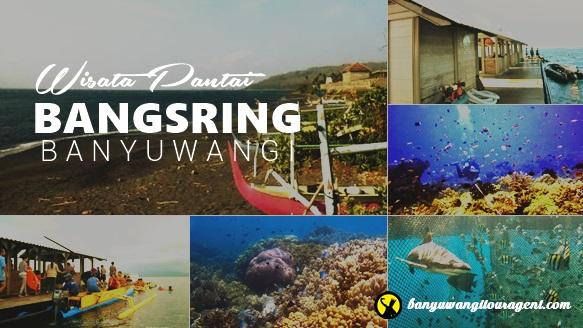 Pantai Bangsring Underwater Banyuwangi Kab