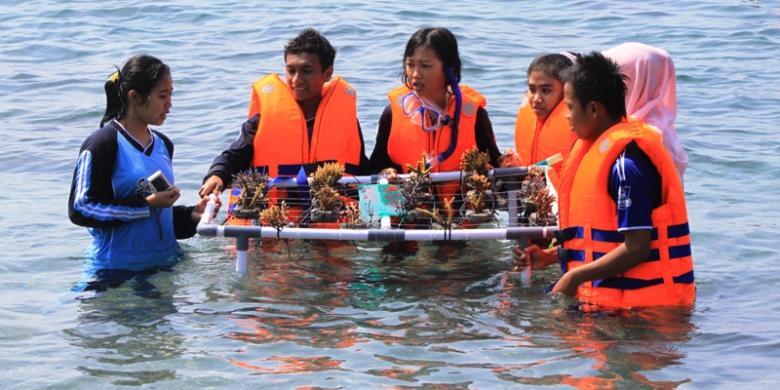 Siswi Banyuwangi Tanam Rumah Terumbu Karang Selat Bali Kompas Pantai