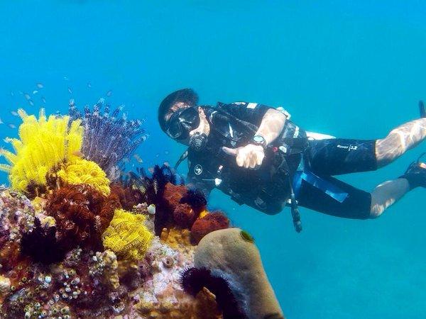Snorkeling Berenang Anak Hiu Pantai Bangsring Banyuwangi Kab