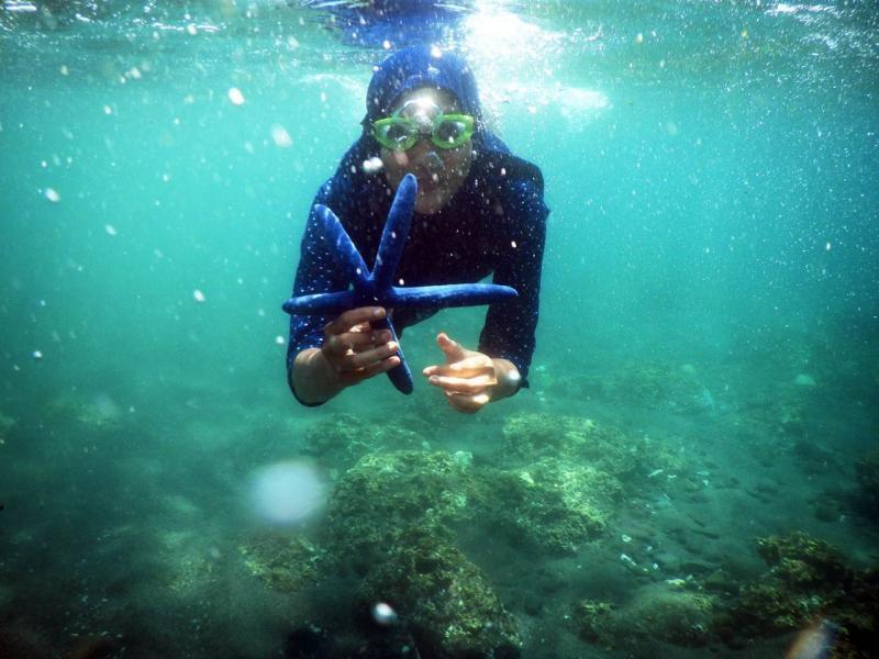 Tourism Wisata Kuliner Bangsring Underwater Banyuwangi Bangsring1 Bangsring2 Bangsring3 Pantai