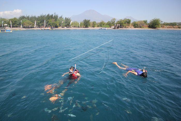 Wisata Pantai Bangsring Antara Foto Pengunjung Bersnorkeling Banyuwangi Jawa Timur