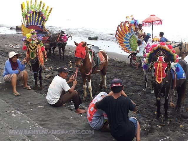 Pantai Blimbingsari Jangan Lupa Menikmati Ikan Bakarnya Naik Kuda Kab