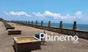 Temukan Keindahan Desa Wisata Blimbingsari Pantai Kab Banyuwangi