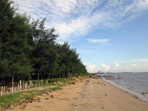 10 Foto Pantai Cemara Tuban Jatim Rute Letak Lokasi Peta