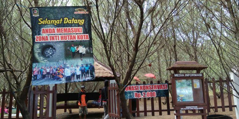 Banyuwangi Punya Pantai Hutan Cemara Rindang Kompas Zona Inti Kota