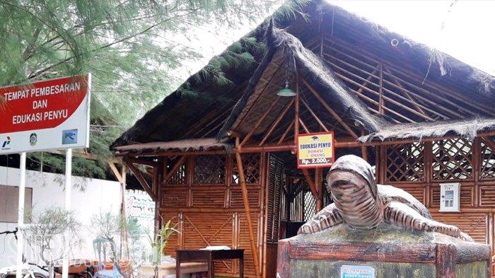 Desa Balik Konservasi Pantai Banyuwangi Halaman Tempat Pembesaran Edukasi Penyu