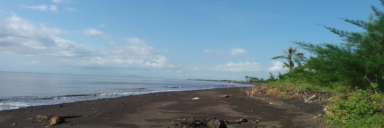 Desa Sukojati Kecamatan Blimbingsari Kabupaten Banyuwangi Pantai Cemara Sengon Kab