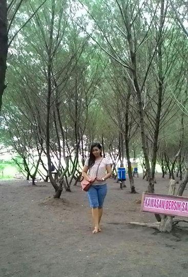 Menikmati Hijaunya Pantai Cemara Banyuwangi Img Kab