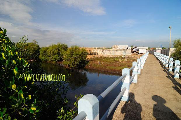 Pantai Cemara Banyuwangi Keunikan Lorong Hutan Rute Kota Cukup Mudah