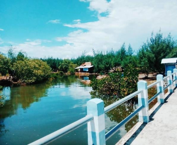 Pantai Cemara Banyuwangi Tempat Wisata Asik Liburan Kab