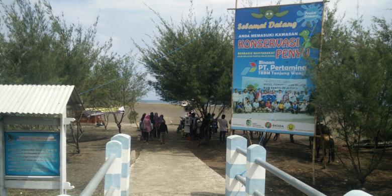 Pantai Cemara Destinasi Wisata Banyuwangi Kompas Kab