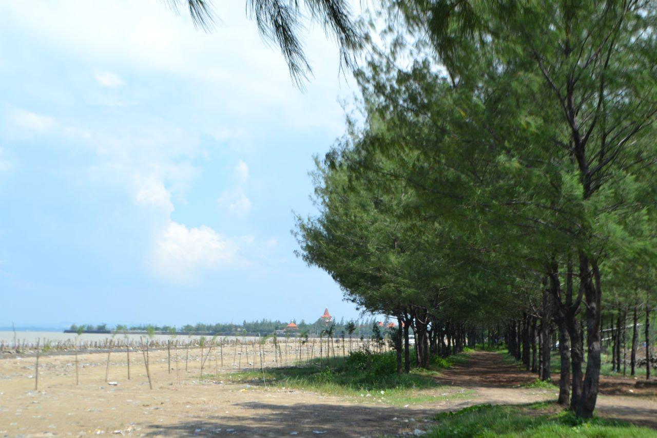 Pantai Cemara Destinasi Wisata Banyuwangi Potensi Lokal Kabupaten Jawa Timur