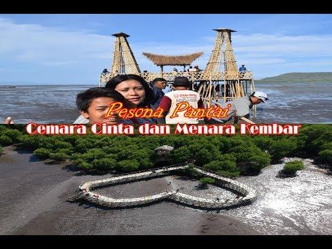 Pesona Pantai Cemara Cinta Menara Kembar Magrove Kawang Muncar Banyuwangi